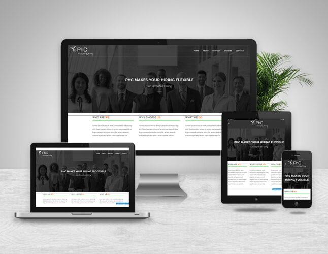 brainwaves - web design - phc